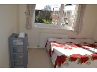 Very quiet, nice and clean room in an immaculate clean house