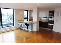 - Luxury 2 bed 2bath furnished Penthouse apartment + corner terrace with PARKING in Woolwich SE18!!