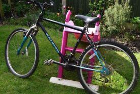 Raleigh activator gents bike