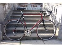 Reynolds 531 Raleigh racer with full Campagnolo (classic/retro road/town bike like dawes/giant/trek)