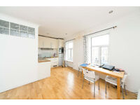 Lovely and bright 1 bedroom 2nd floor flat on Caledonian Road