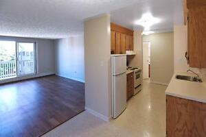 Spacious 2 Bedroom with Direct Access. Plus: Pet Friendly!