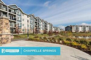 NEW Pet Friendly Two Bedroom Apartment w in-suite laundry SW EDM