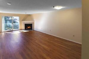 2 Bedroom Fireplace Suite with Dishwasher- 1 Month Free Promo!
