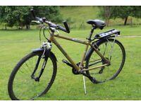 Decathlon Riverside Bike