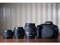 Canon 600d camera + 3 lenses