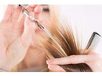 Fantastic Opportunity for Senior Stylist and Hair Tutor/Educator in Clapham Junction. SW11