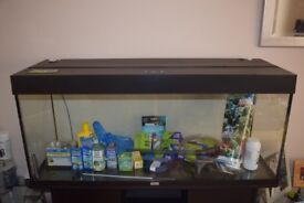 Juwell Rio 240 tank and cabinet