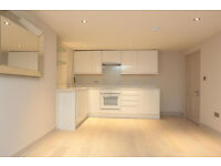 Good size 1 Bedroom Flat in Newbury Park part dss accepted with guarantor