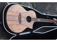 Beautiful Ibanez Exotic wood series acoustic guitar with hard case