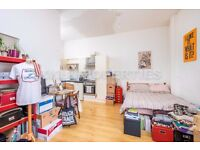 Lovely Studio Flat to Let in Clapton Pond E5
