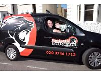 Book today an expert Mice Control Service in Hackney, London.
