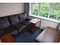 1 Bedroom Flat to Rent in Kilkeel Center