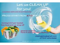 Cleaner cleaning and ironing services