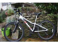 Boys Ridgeback MX24 Terrain Mountain Bike