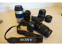 Sony Alpha SLT-A55V SLR and SIX lenses bundle for sale