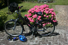 Ladies Giant Bicycle XS Very Low Mileage with many extras