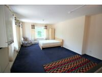 Lovely Studio, fully carpetted with separate bathoom. DSS COnsidered.
