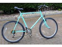 Gents Mountain/ City Bike