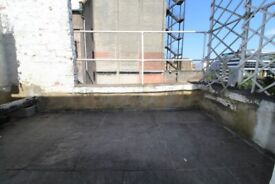 AMAZING NEWLY REFURBISHED 1 BED FLAT WITH ROOF TERRACE NR ZONE 2 NIGHT TUBE, TRAIN & 24 HOUR BUSES