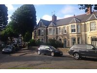 Unfurnished Room in House Share on lovely Pontcanna street