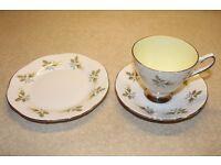 ELIZABETHAN ENGLISH FINE BONE CHINA TEA SET
