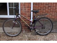 Ladies Mountain Bike (Falcon Make)