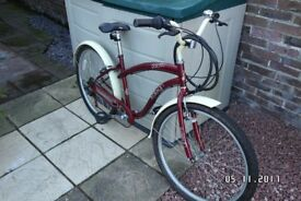 Girls Raleigh Pacific Bicycle