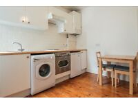 Bright and fully furnished one bedroom period GARDEN flat in quiet road close to Whitechapel station