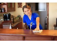 Domestic and Office Cleaners Wanted