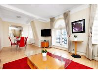 Lovely 2 bedroom flat - MARBLE ARCH/EDGWARE RD