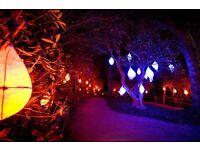 Wakehurst Place - Glow Wild Volunteer