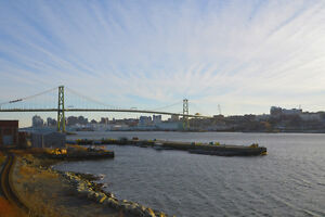 Newly renovated one bed with laminate floors and harbour views!