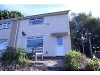 Lovely 2 bed property for let in Blaen Y Maes