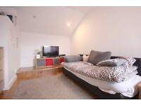 Modern, Wood Floors, Well Presented, Neutral Décor, High Ceilings, Spacious