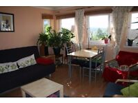 Bright double room with a private bathroom in a friendly flat