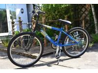 RALEIGH 15 inch FRAME 24 inch WHEEL ALL TERRIAN BLUE GECKO (18 SPEAD) SHIMANO GRIP SHIFT BICYCLE