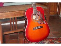 Hummingbird Acoustic Guitar Replica