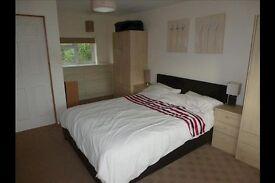 Beautiful 2 bedroom flat available in Kilburn