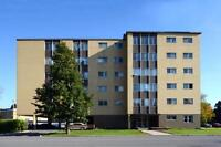 One Bedroom Apartment,Fantastic Location on the Edge of Westboro