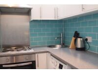 **1 Bedroom Flat - ideal for a couple or single professional