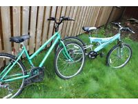 2 Bikes for sale £50 for the pair !