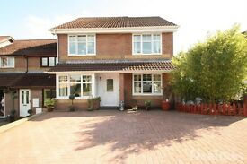 Beautiful 3/4 Bedroom house to rent in Ty Canol