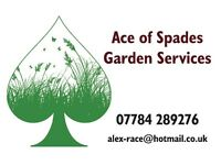 Ace of Spades Garden Services