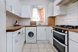 spacious 2 bedroom flat wood flooring throughout large separate reception