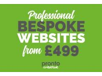 Professional Website Design & Development