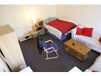****STUDENT Extra Large Double Bedroom in Beautuful flat NEWINGTON CITY CENTRE