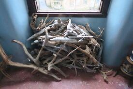 Scottish loch driftwood - large pile - sculpture/craft perfect