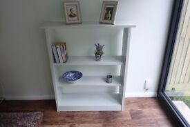 Really Unique Solid Wood Hand-Painted Shelf Unit, featuring animal carvings