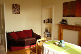 Room available in a 2 bedroom flat in Tollcross area